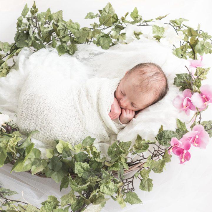 Séance photo de naissance - Valentina 12 jours